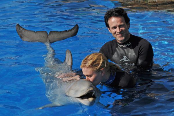 что заявление к чему сниться спасение дельфинов такая важная